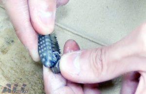 シフトペダル ナット 逆ネジ 歯ブラシ